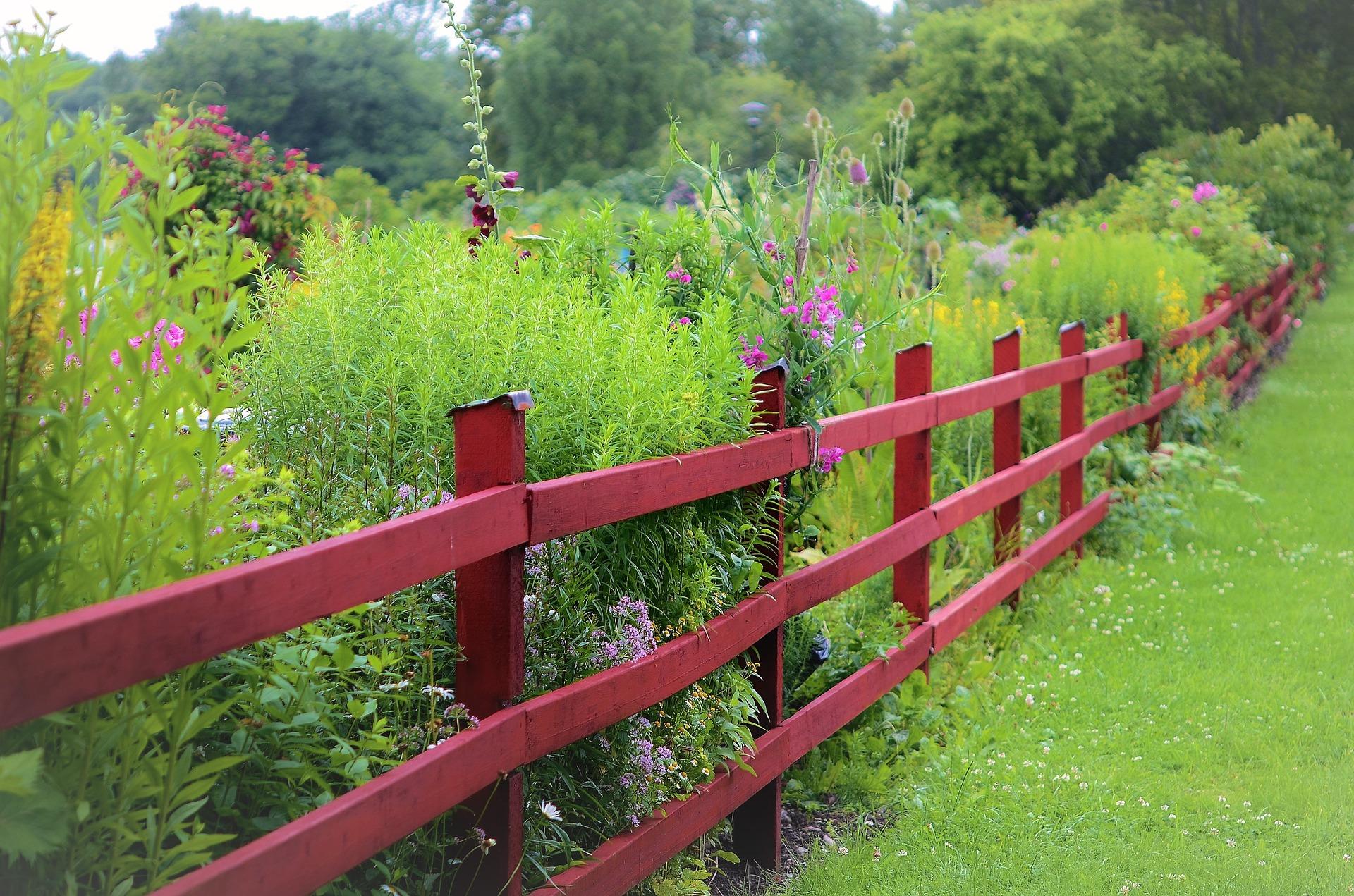 Natíráme plot