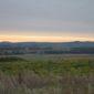 O úrodné půdy na jihu Moravy je dobře postaráno